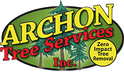 Tree Removal Vancouver